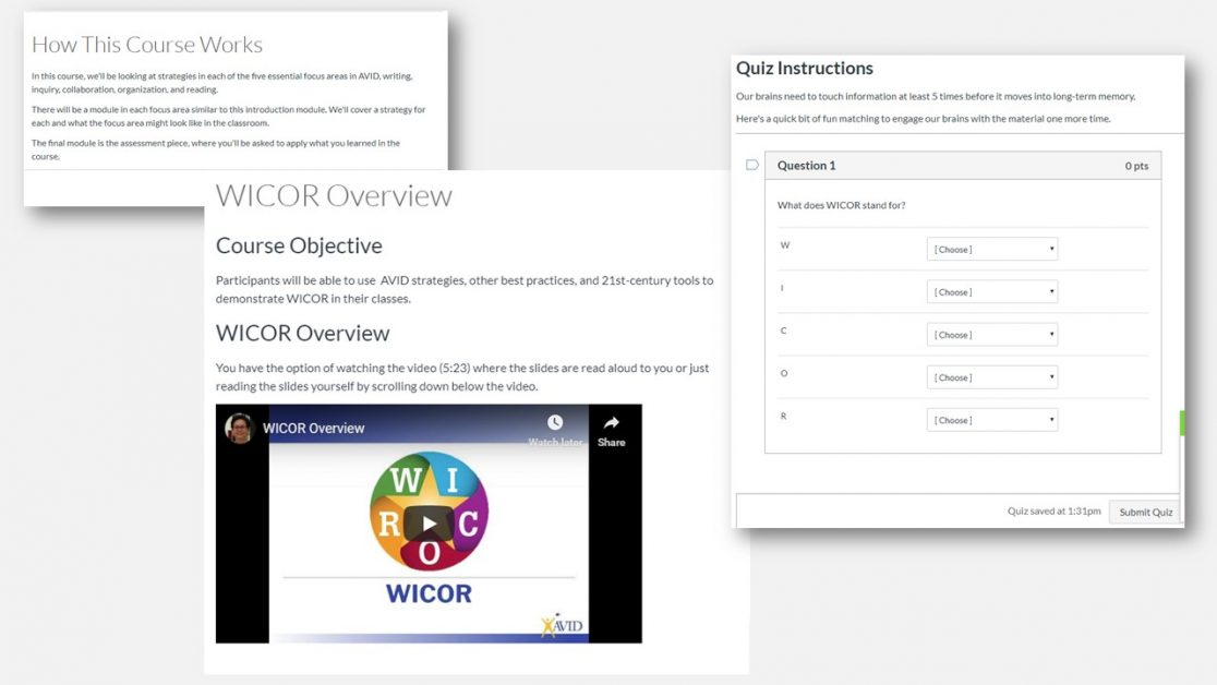 AVID online PD course WICOR