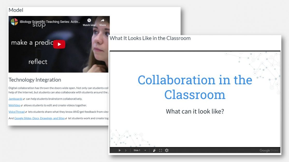 AVID online PD collaboration through technology